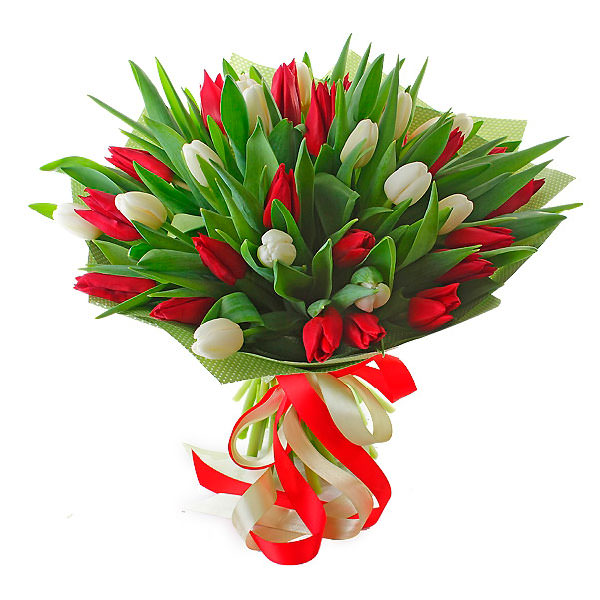 Тюльпаны купить армавир